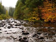 большое река утесистое стоковое фото rf