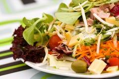 большое свежее итальянское лето салата Стоковое Изображение RF