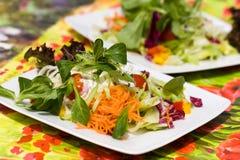 большое свежее итальянское лето салата Стоковое Изображение