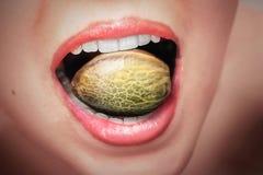 Большое семя пеньки в рте woman's стоковые фото
