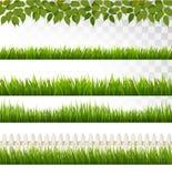Большое собрание зеленой травы и француза Стоковое Изображение RF