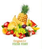 Большое собрание различных органических свежих фруктов Стоковое Изображение