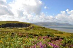 Большое Orme, Уэльс стоковые фото