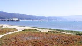 БОЛЬШОЕ SUR, КАЛИФОРНИЯ, СОЕДИНЕННЫЕ ШТАТЫ - 7-ОЕ ОКТЯБРЯ 2014: Пеший путь вдоль Тихого океана в парке штата Garrapata стоковые изображения rf