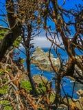 Большое Sur, CA США - парк штата Lobos пункта - горная порода в Тихом океане Стоковая Фотография RF