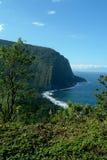 большое waimea острова стоковая фотография rf
