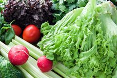 Большой ассортимент зеленых цветов, капуста Пекина, салат, красные овощи разбросал на таблицу стоковое фото rf