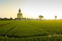 большой Будда Стоковые Фотографии RF