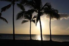 большой взгляд захода солнца острова Гавайских островов Стоковые Фото