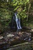Большой водопад в прикарпатском лесе Стоковое Изображение RF