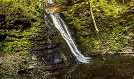 Большой водопад в прикарпатском лесе Стоковые Изображения RF