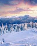Большой восход солнца зимы в прикарпатских горах с снегом покрыл f Стоковое Изображение RF