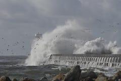 Большой выплеск волны моря Стоковые Фото