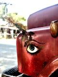 Большой глаз на тележке Стоковая Фотография