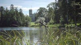 Большой дворец Gatchina в парке Gatchina в дне лета солнечном сток-видео