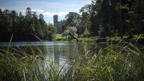 Большой дворец Gatchina в парке Gatchina в дне лета солнечном видеоматериал