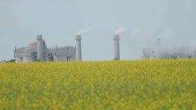 Большой завод с дымом от труб сток-видео