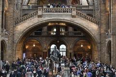 Большой зал музея Лондона естественной истории стоковая фотография