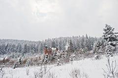 Большой замок дома на лесе сосен покрытом снегом на Carpa Стоковые Изображения