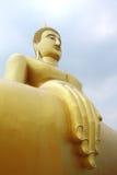 большой золотистый монах Стоковые Фото