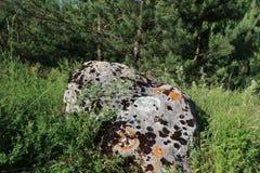 Большой камень на луге Стоковое Фото