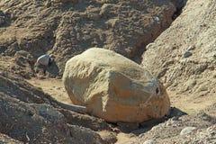 Большой камень среди куч песка стоковое изображение rf