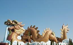 большой китайский дракон золотистый Стоковое Изображение