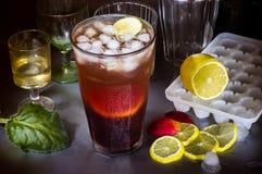 Большой коктеиль плодоовощ на партии, стеклах, лимоне и льде Стоковые Изображения RF