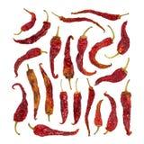 Большой комплект сухого перца chili изолированного на белизне Стоковые Фотографии RF