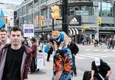Большой, кот имбиря увиденный на плече эстрадного артиста улицы стоковое изображение rf