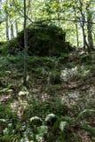 Большой, красивый камень с зеленым мхом сгорел в древесинах на пути к хате Kozya Stena Стоковые Фото