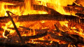 Большой лагерный костер от ожога ветвей на ноче в лесе сток-видео