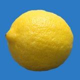 большой лимон одиночный Стоковое Изображение