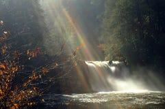 большой национальный парк гор закоптелый Стоковые Изображения RF