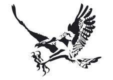 Большой орел в черноте Стоковая Фотография