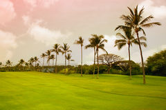 большой остров Гавайских островов Стоковая Фотография