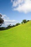 большой остров Гавайских островов Стоковая Фотография RF