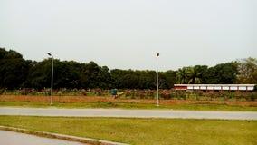 Большой район плантации дерева манго стоковое изображение
