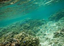 Большой риф астролябии Стоковые Изображения