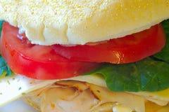 большой сандвич Стоковые Изображения RF