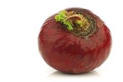 большой свежий красный цвет редиски Стоковые Фото