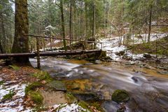 Большой упаденный хобот спруса, ели в древесинах, реки горы, потока, заводи с речными порогами в последней осени, предыдущей зиме стоковые фотографии rf