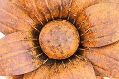 Большой чугунный заржаветый цветок стоковое изображение