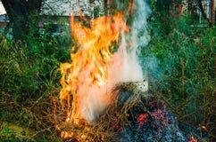Большой яркий костер горящее снаружи стоковое фото rf