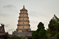 большой pagoda гусыни одичалый Стоковые Фото