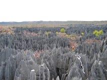 большой tsingy взгляд Стоковое Изображение RF