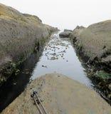 Большому перескакиванию над этим каналом пульсации на западное побережье Trai стоковые фото