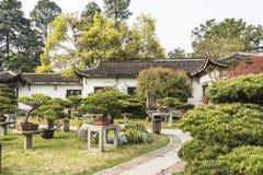 Бонзаи в саде Duojing Стоковые Фотографии RF