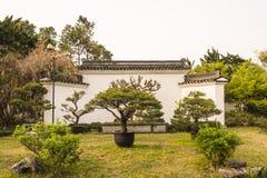 Бонзаи в саде Duojing Стоковая Фотография RF