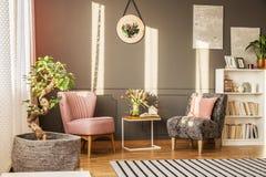 Бонзаи в элегантной живущей комнате стоковое изображение